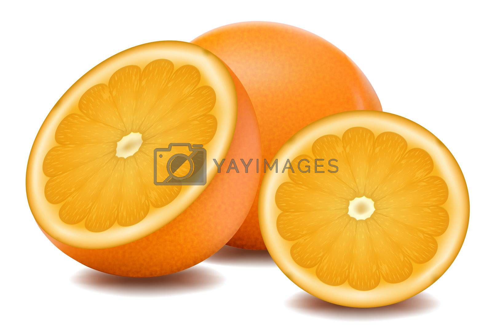 illustration of orange fruit on white background