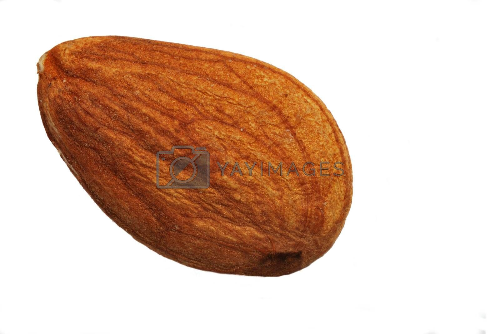 Single almond over white background