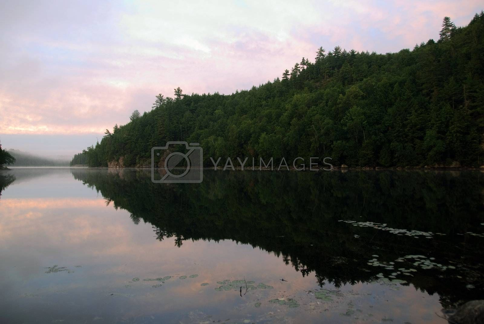 Royalty free image of North American landscape by nialat
