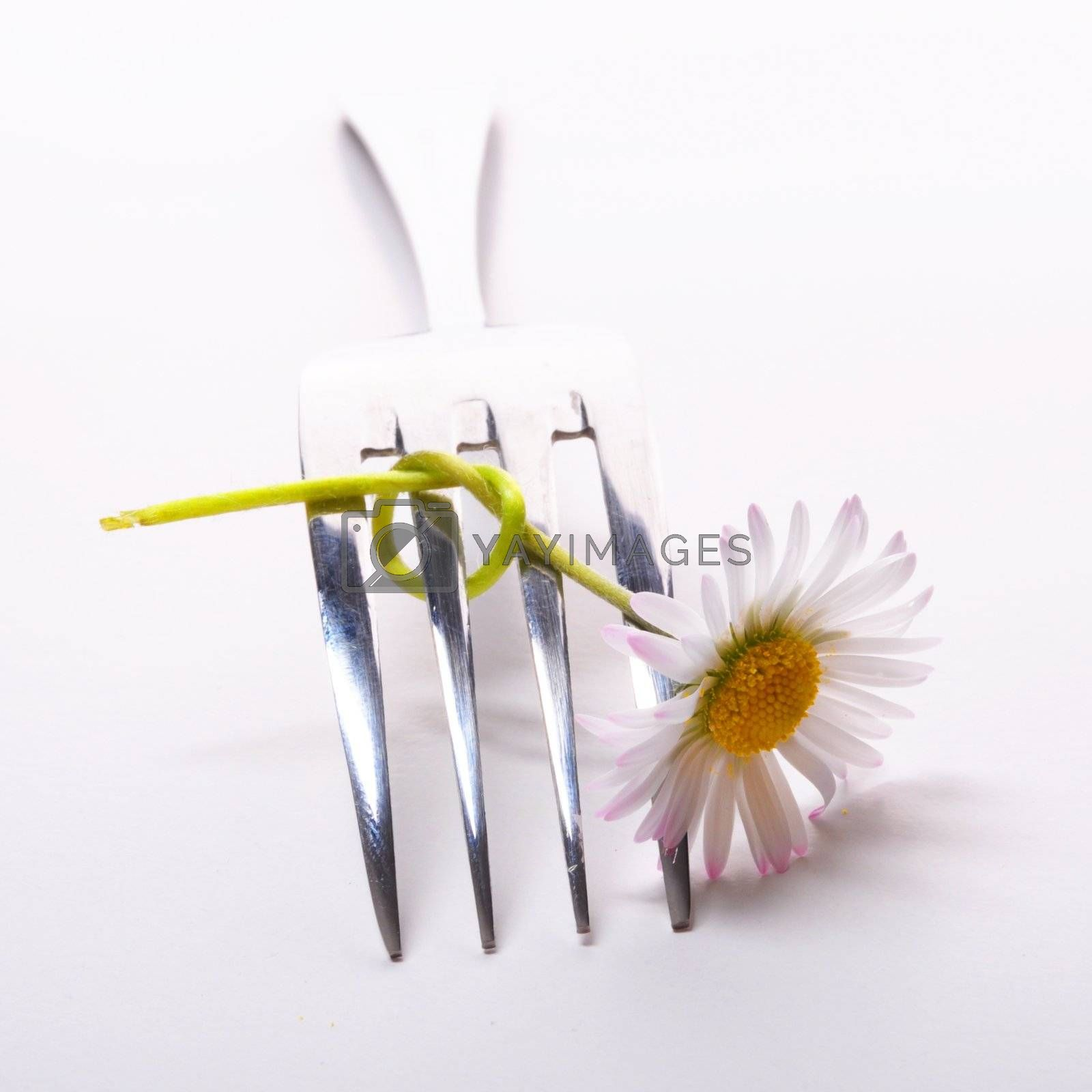 food concept with flower and fork on white table in summer