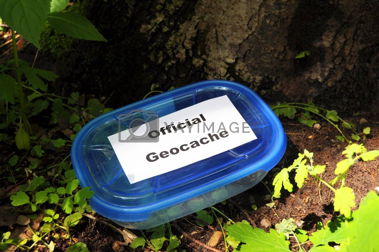 official blue geocache box in nature or forest