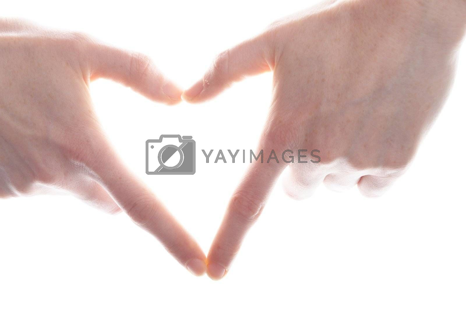 hand and heart isolated on white background showing love concept
