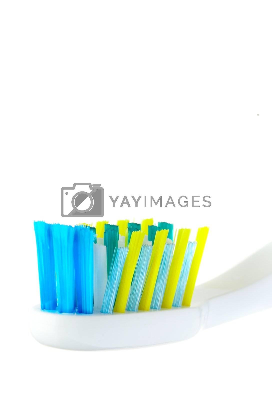 Dental brush on a white background