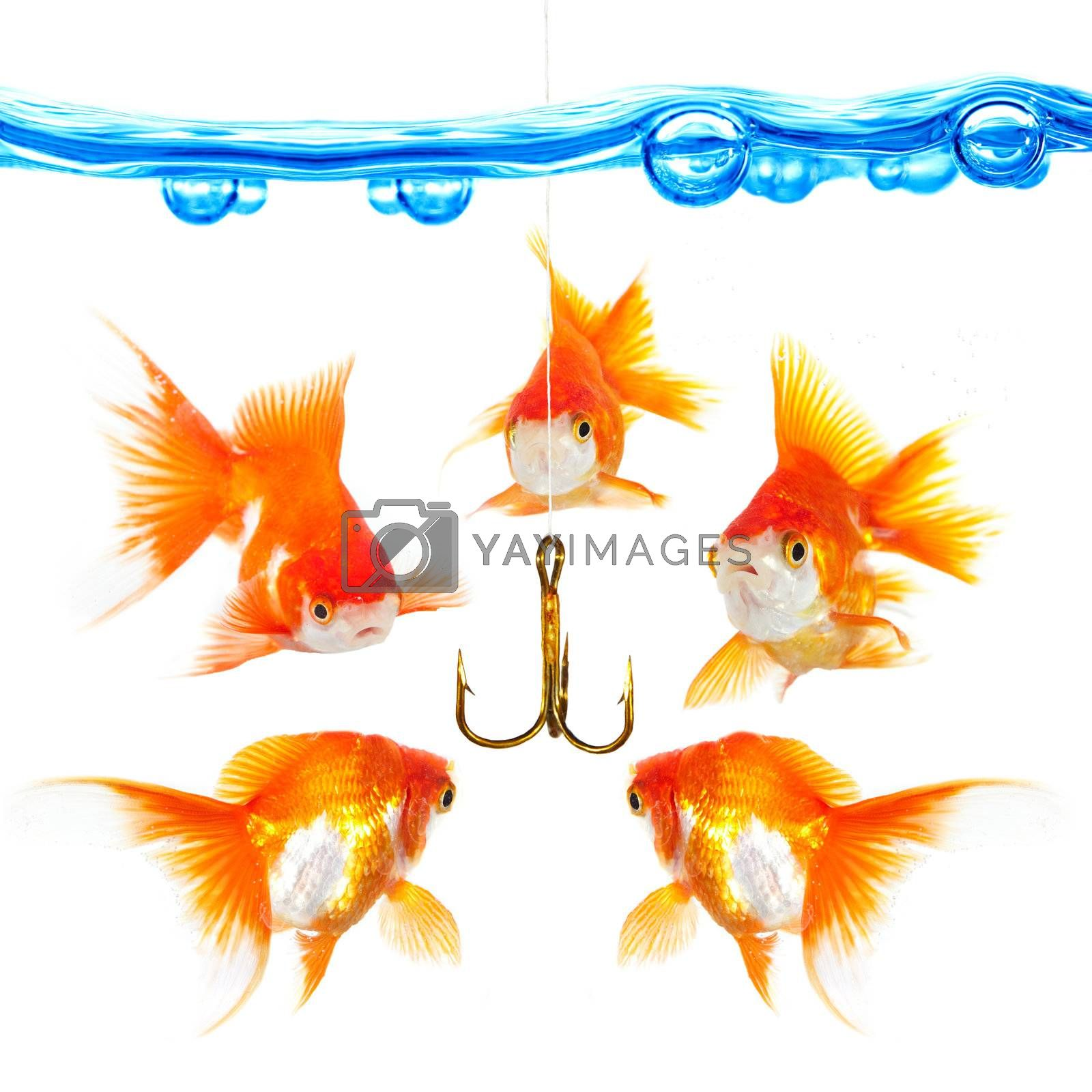 Five small fishes at a hook...