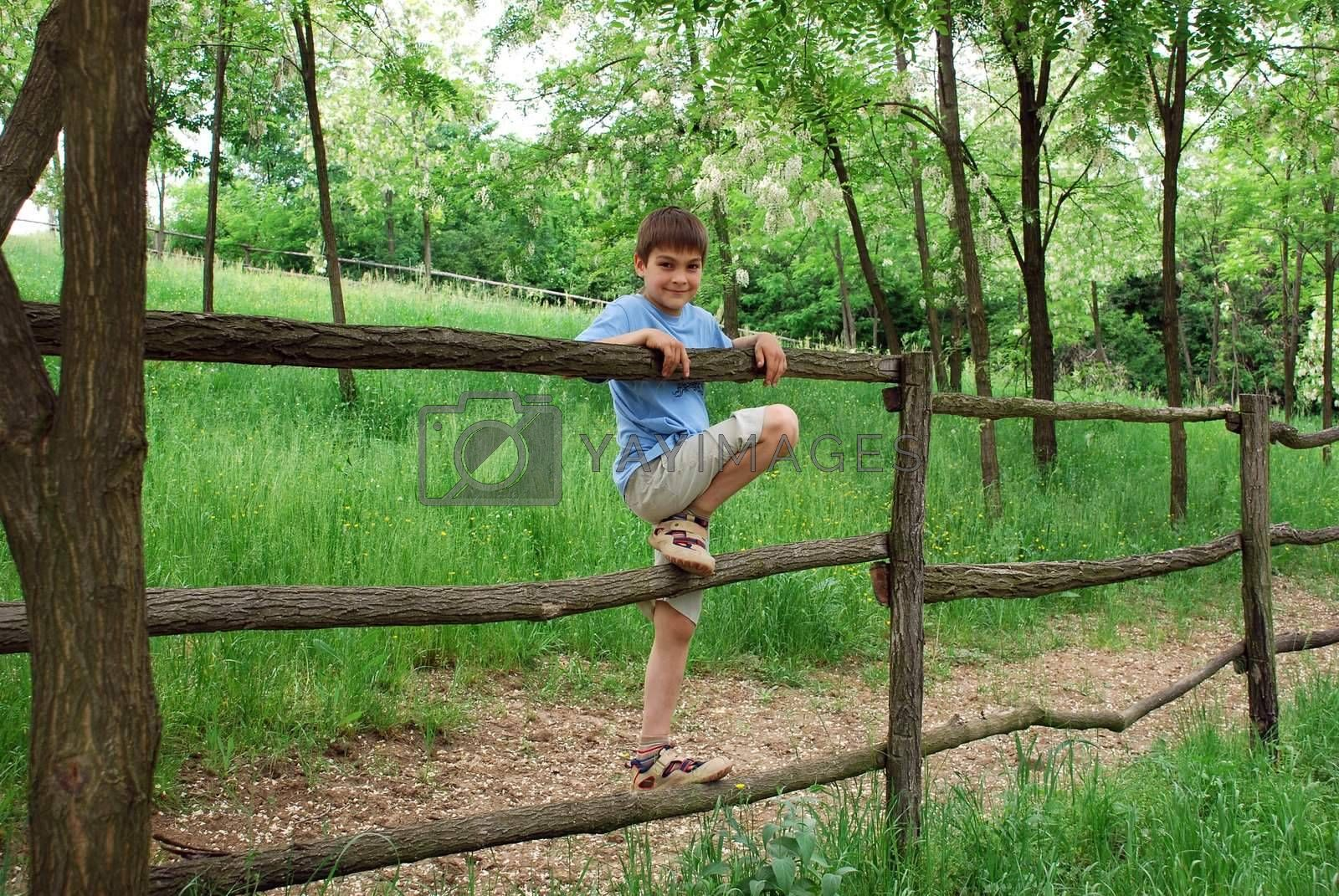 young smiling boy on fence outdoor over green natural countryside background