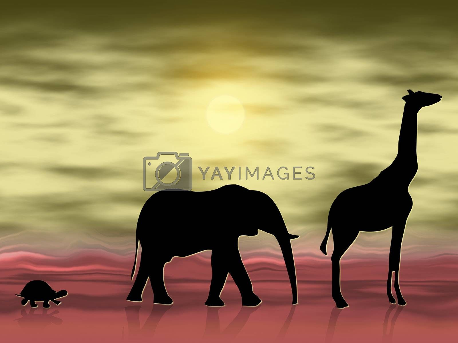 Silhouettes of three animals wandering in the desert
