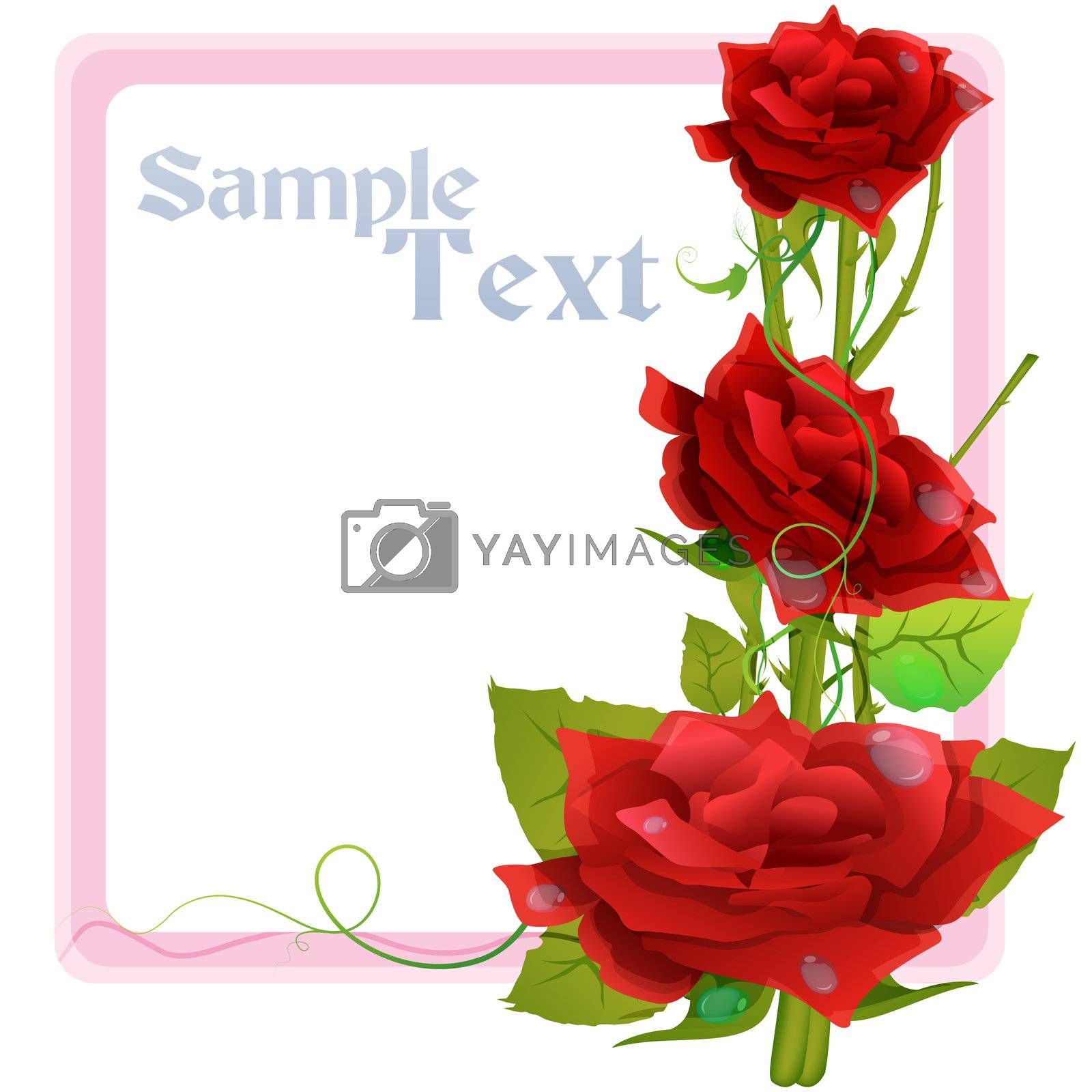 illustration of valentine card with rose on white background