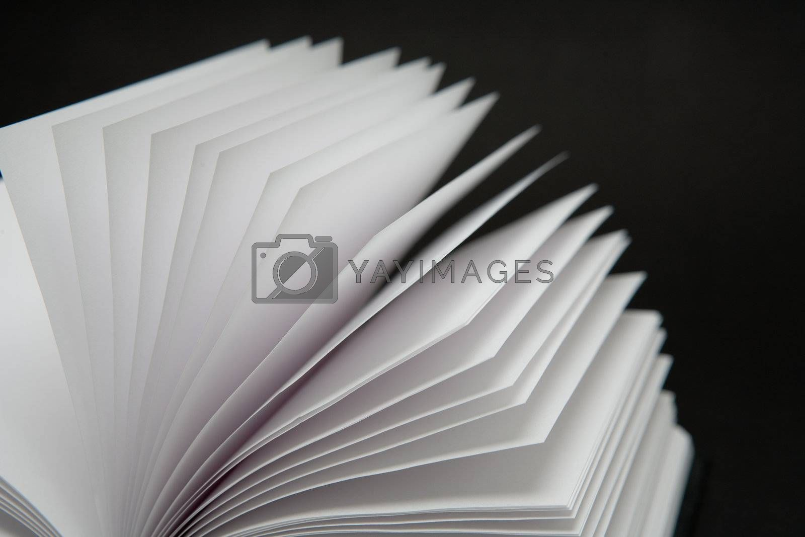 Royalty free image of Blank Book by Luminis