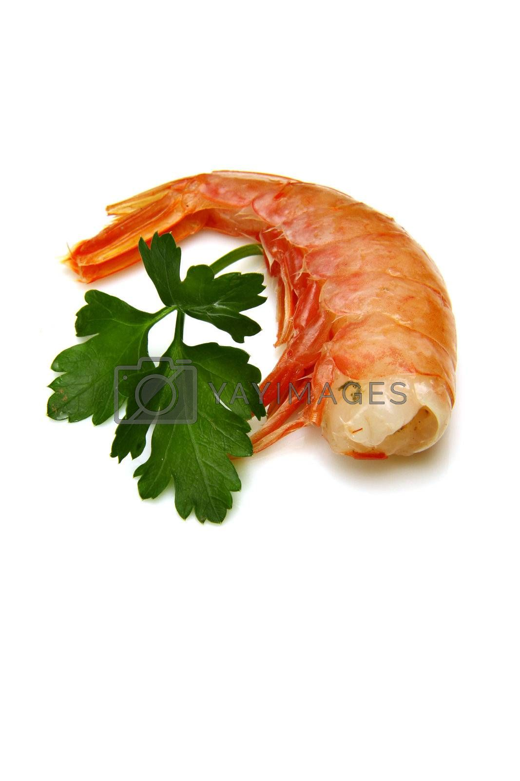 Royalty free image of shrimp by lsantilli