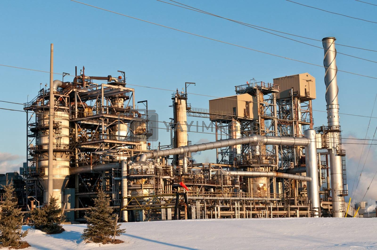 Royalty free image of Petrochemical Refinery in the Evening by brianguest