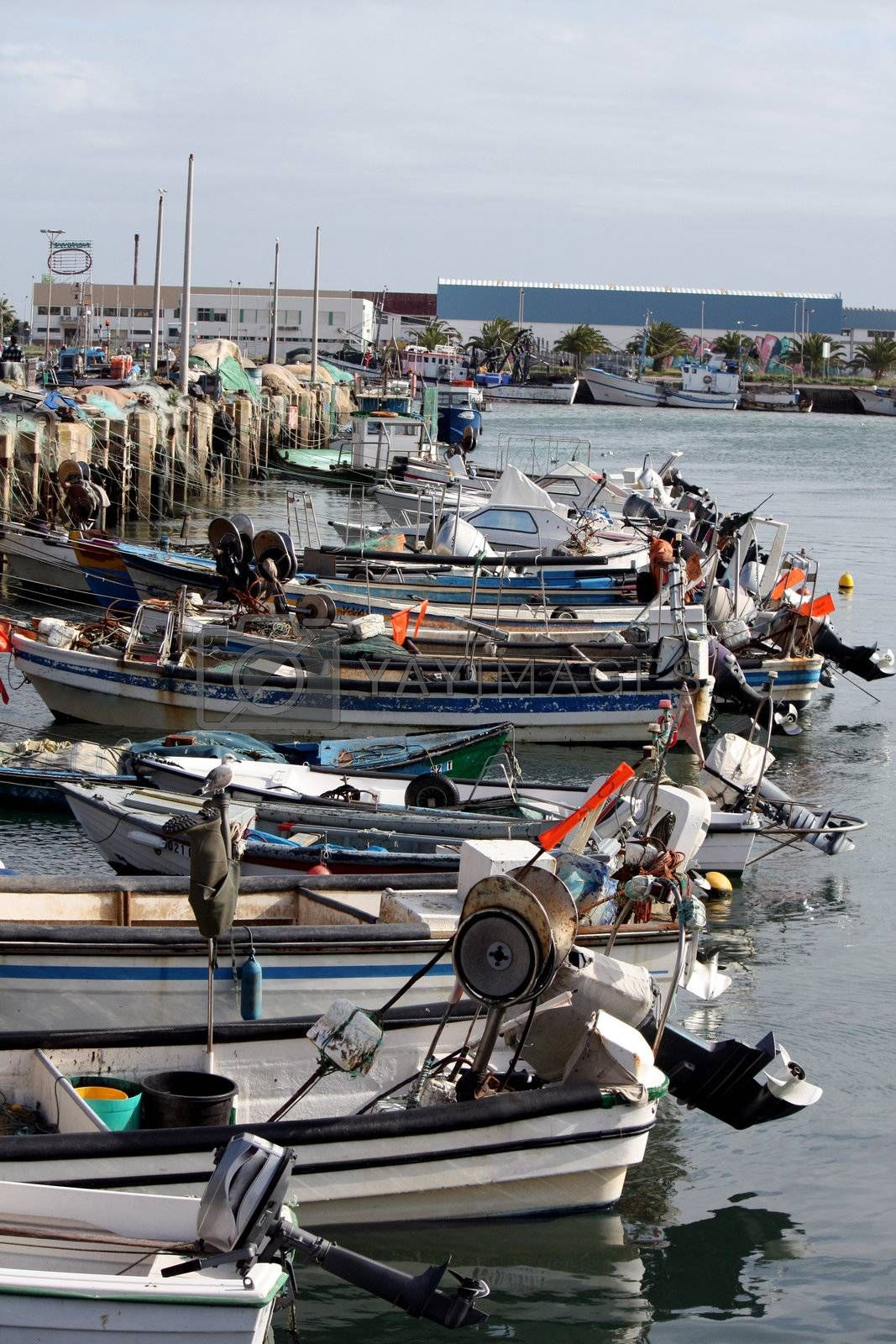 Many anchored small traditional fishing boats on the city of Olh�o, Portugal.