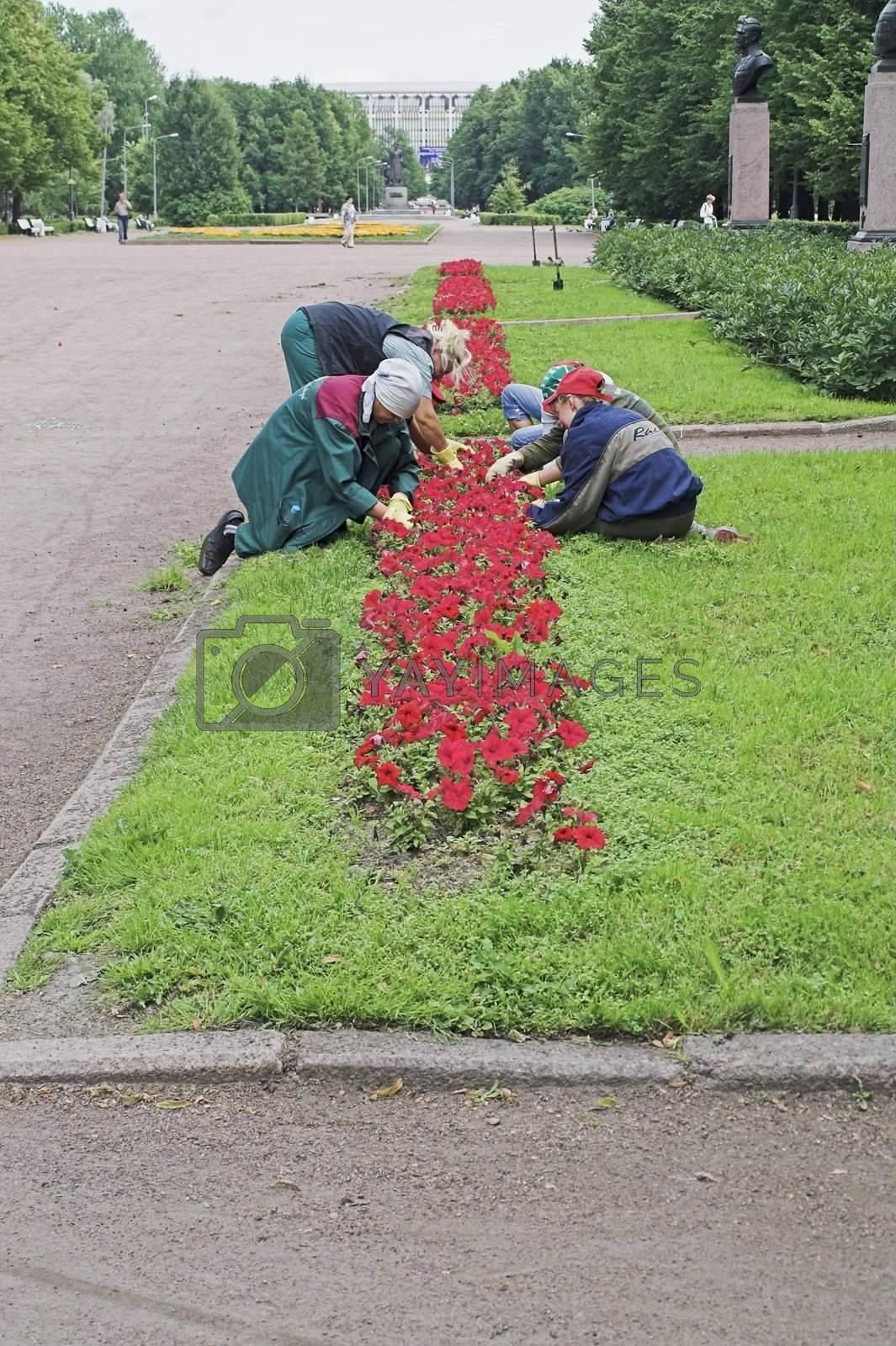 Girls Doing Gardening in City Park