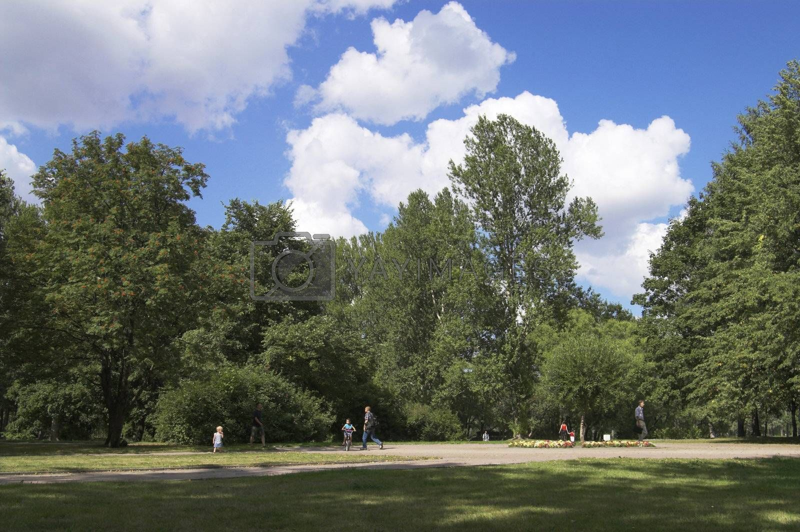 People, flowers, and trees in a summer park.