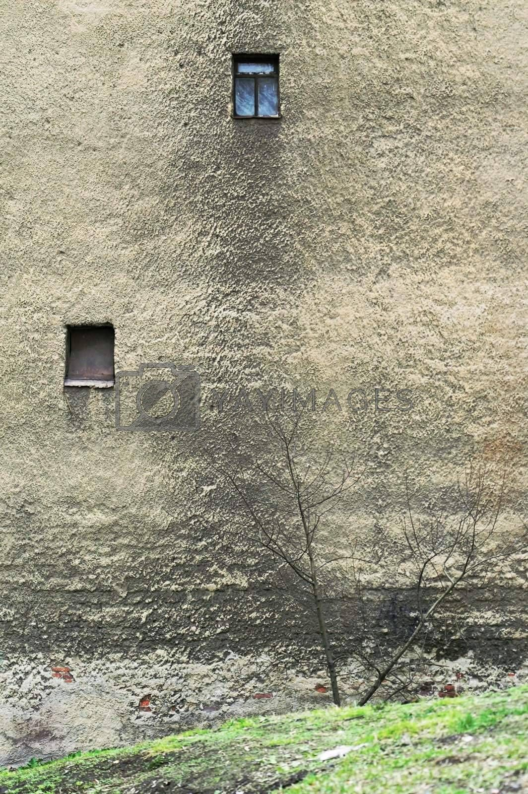 Wall of Old Residential Building