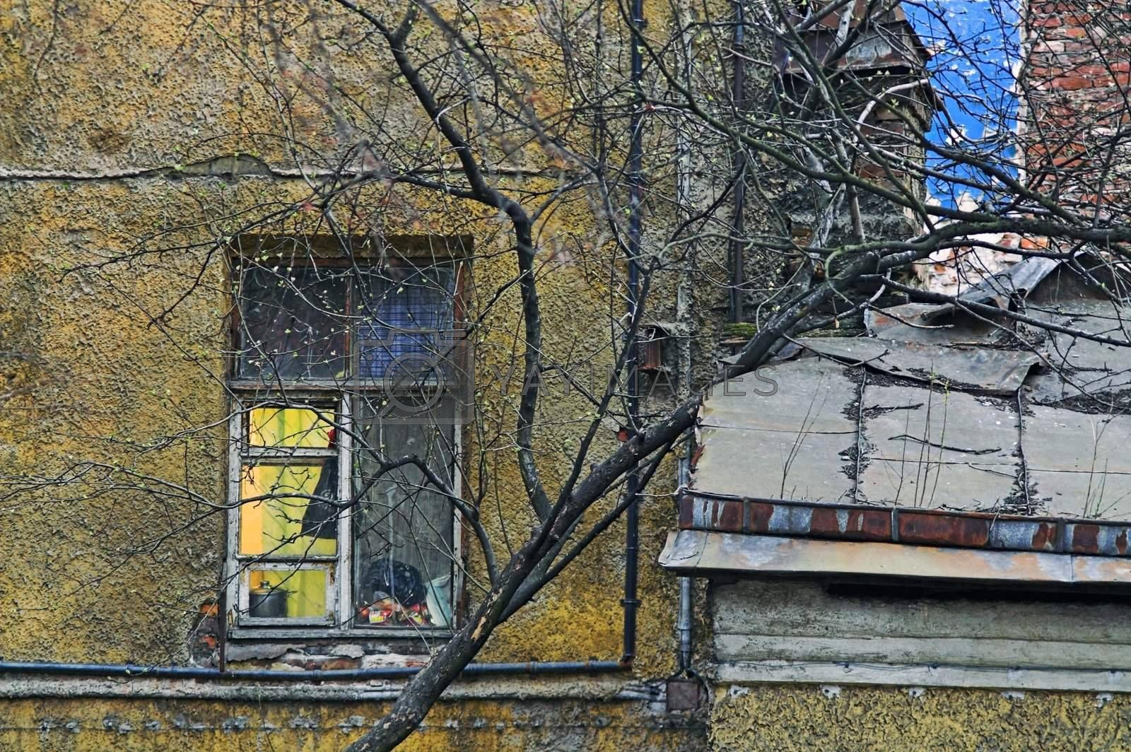 Windows of an old and destructed apartment building at evening
