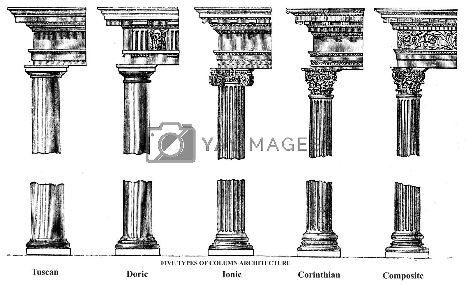 Five types of old column architecture old engraving. Vector, engraved illustration showing a Tuscan, Doric, Ionic, Corinthian and Composite Greek and Roman column