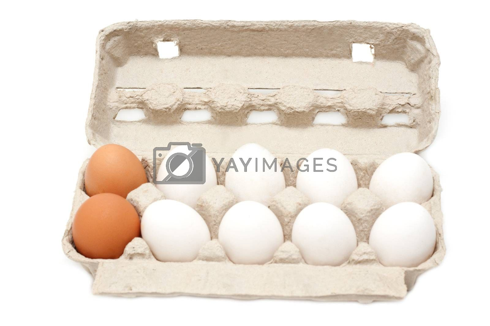 Egg in cardboard packing on white background, groups of ten
