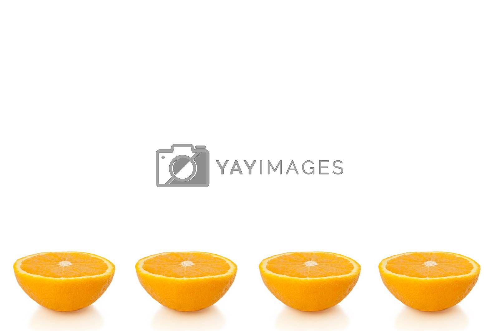 Four small orange halves arranged in a horizontal line along the bottom of the image and over white.