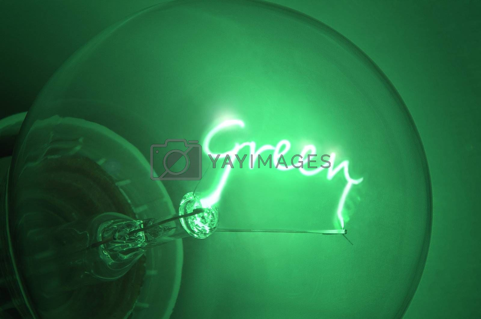 Close up of green light bulb with the illuminated filament spelling the word 'Green'