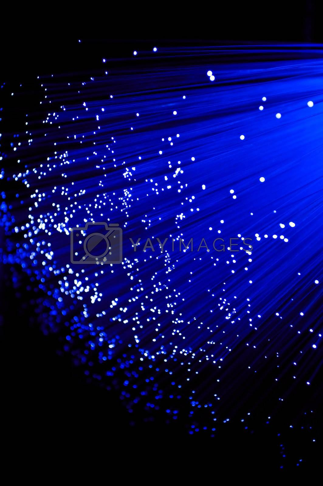 Close up on ends of many illuminated deep blue fibre optic strands with black background.