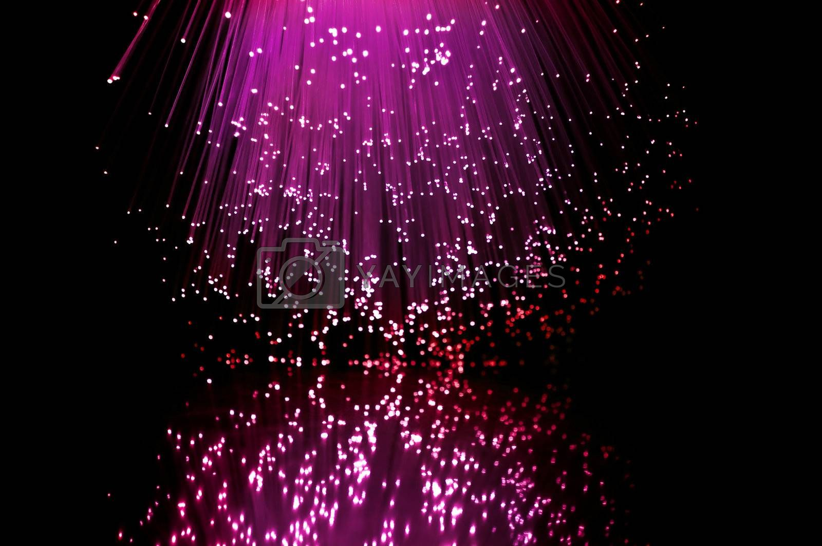 Pink and red fibre optic light strands reflecting in the foreground.