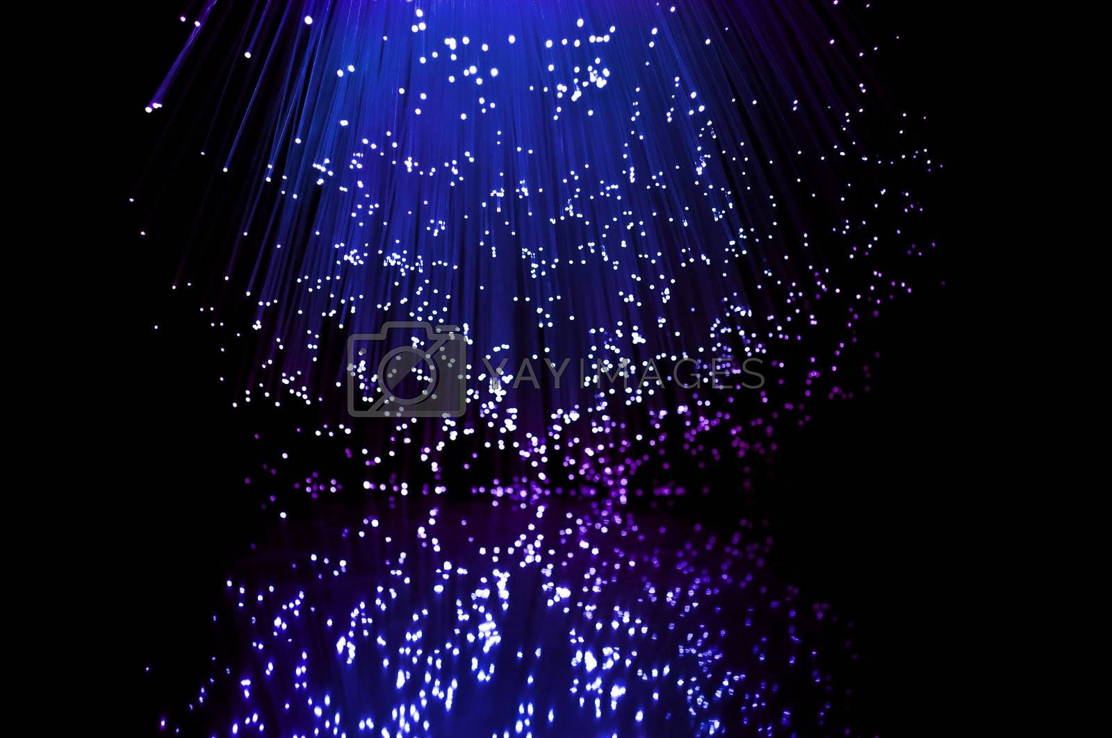 Blue and violet fibre optic light strands reflecting in the foreground.