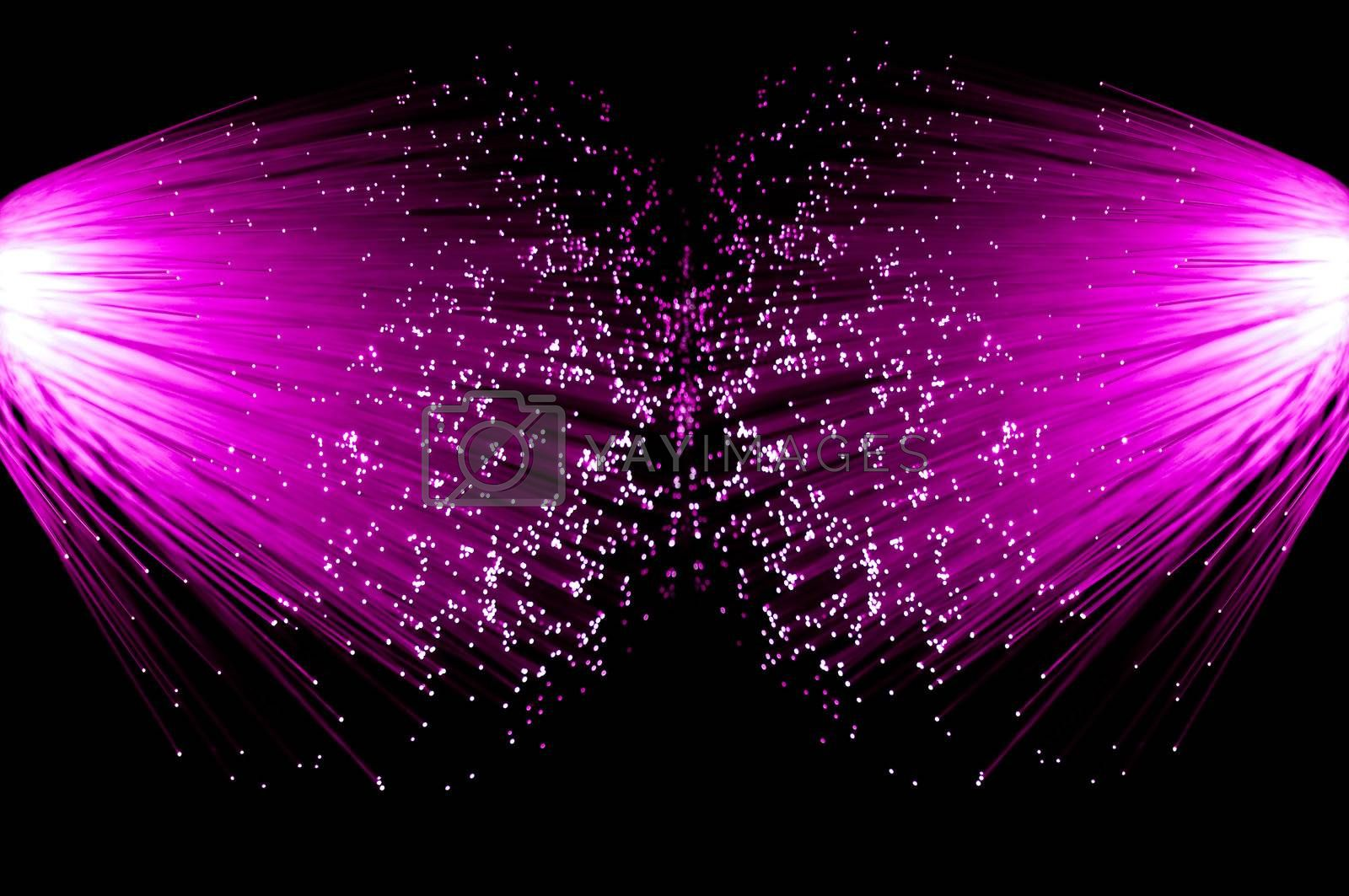 Two illuminated groups of bright pink fibre optic strands emanating from the left and right of the image. Black background.