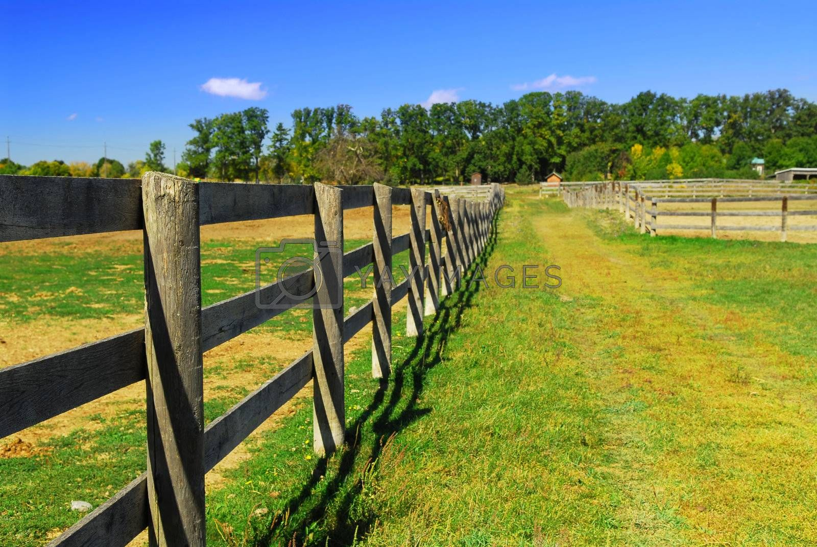 Wooden farm fence and road in rural Ontario, Canada.