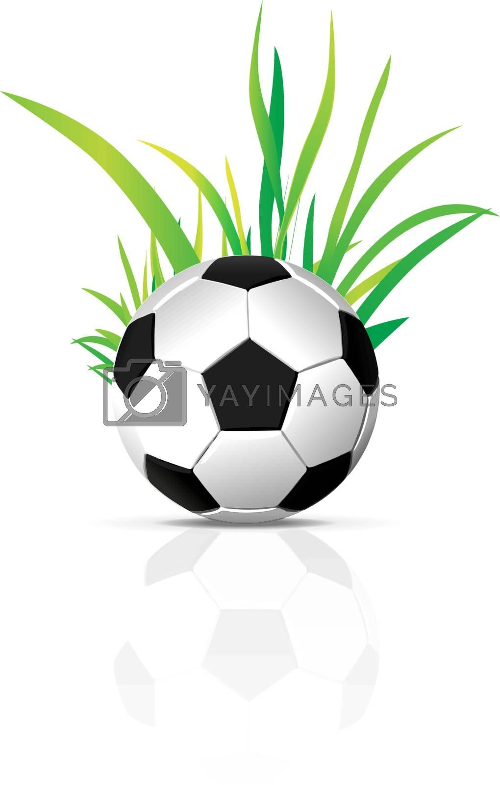 vector soccer ball with grass element isolated on white background