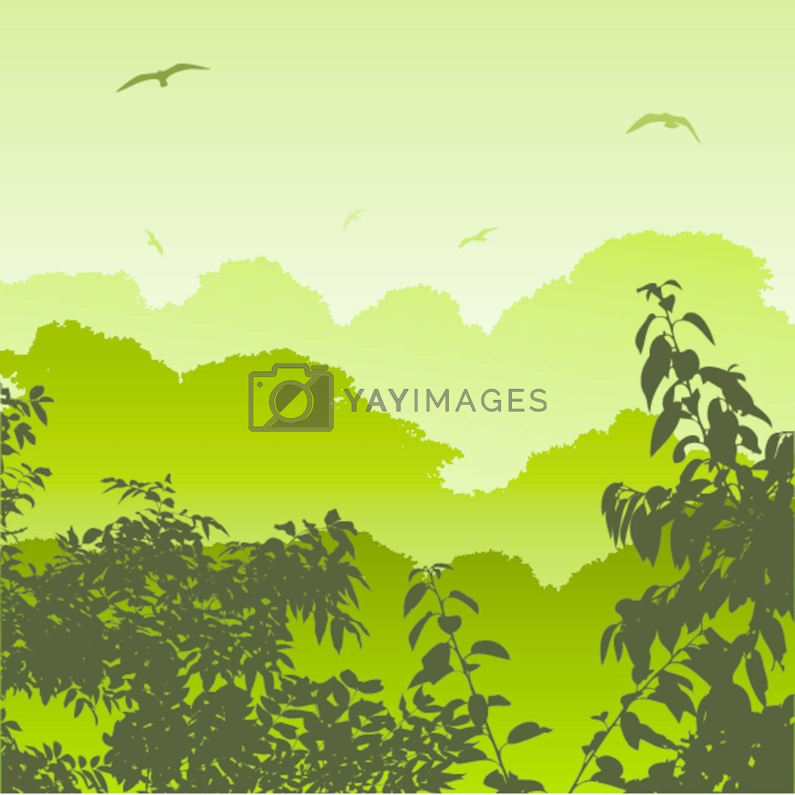 A Green Forest Landscape with Trees