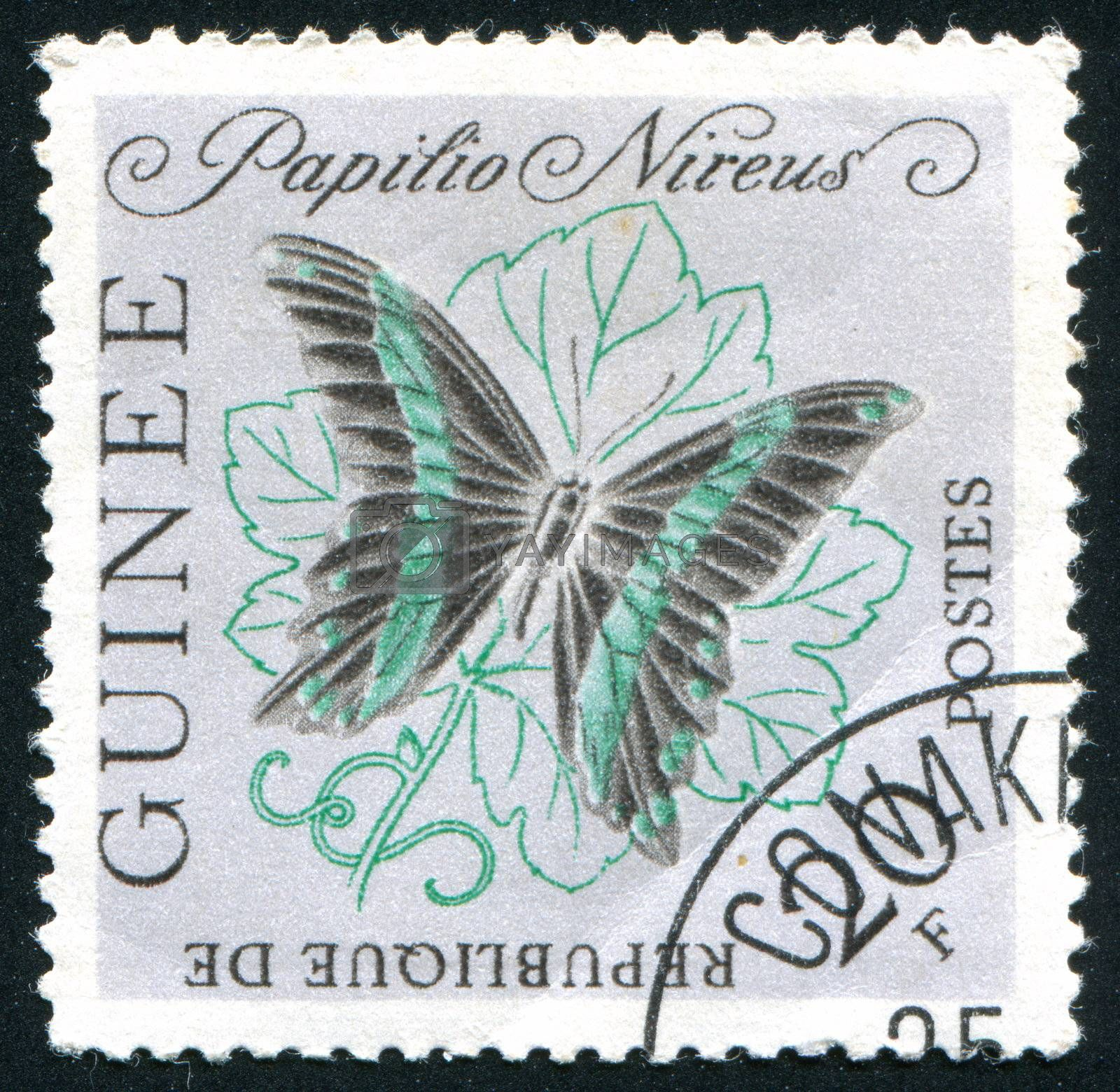 GUINEA - CIRCA 1972:   stamp printed by Guinea,  shows butterfly, circa 1972.