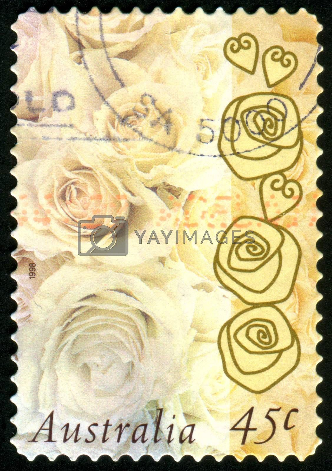 AUSTRALIA - CIRCA 1998: stamp printed by Australia, shows Roses, circa 1998