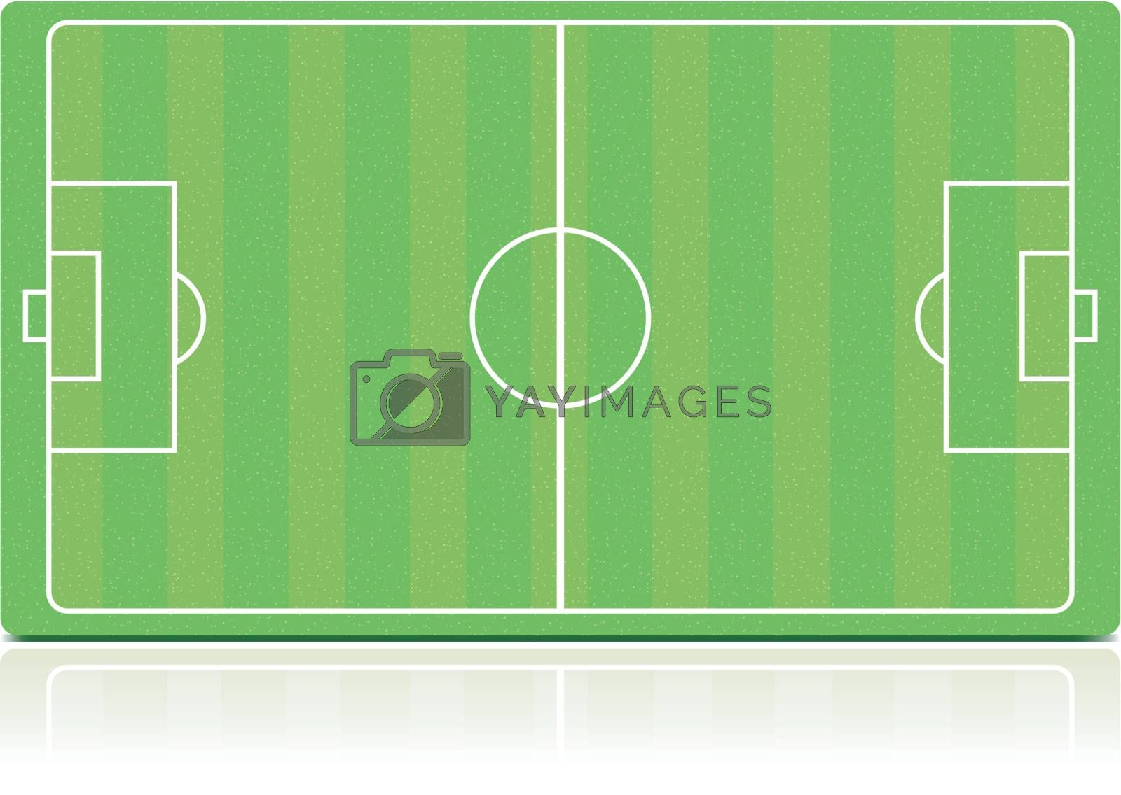 Soccer field with grass (noise) texture isolated on white background