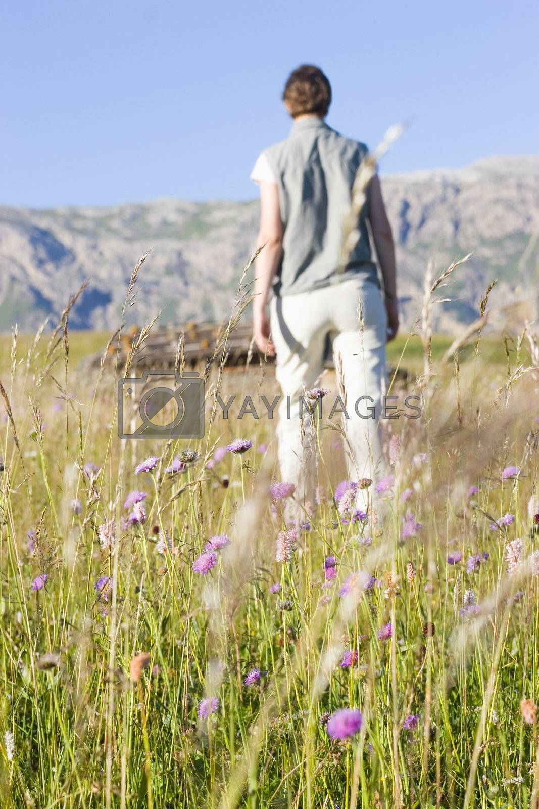 Woman walking in a moutain meadow. Seiser Alm - Dolomites - Italy