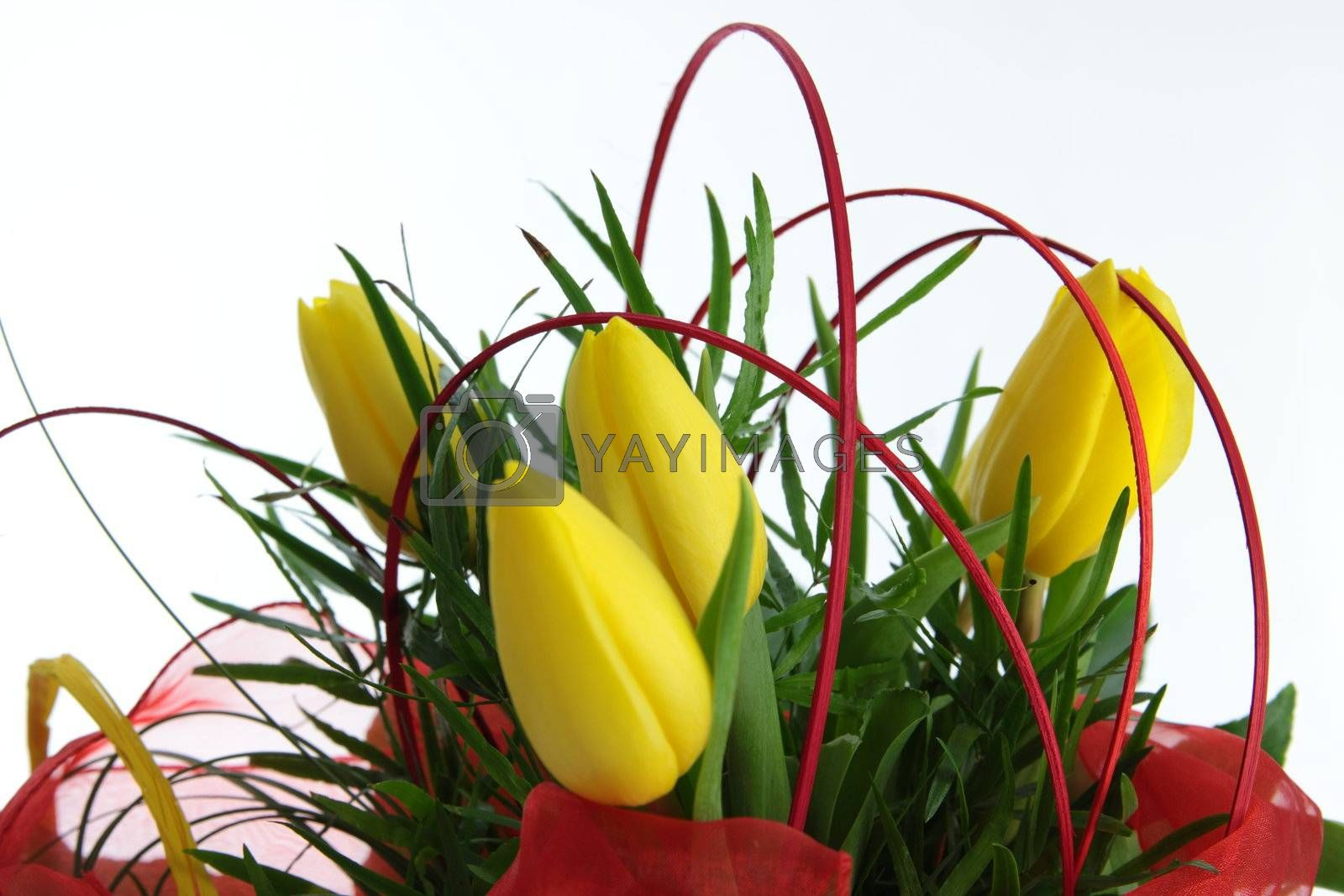 Yellow tulips bouquet by BDS