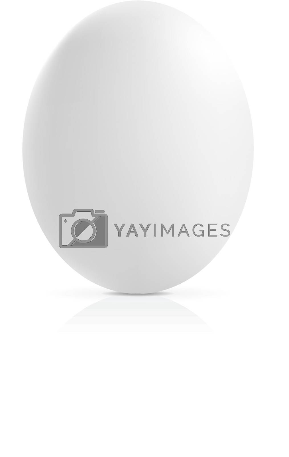 close up of an egg on a white background. Vector illustration