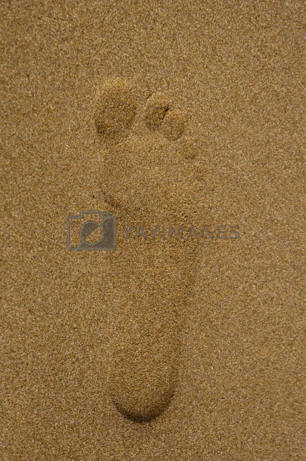 High resolution image. Trace of a foot of the person on sand.