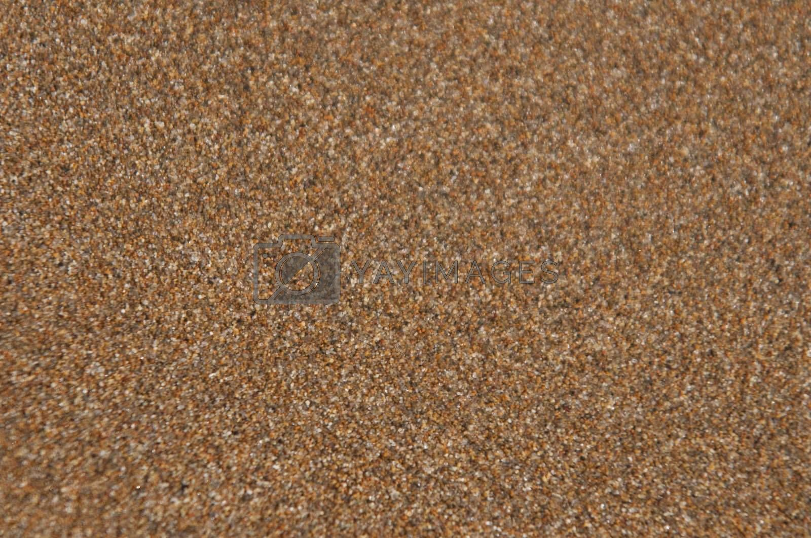 High resolution image. Sand texture. A sandy background. Natural material.