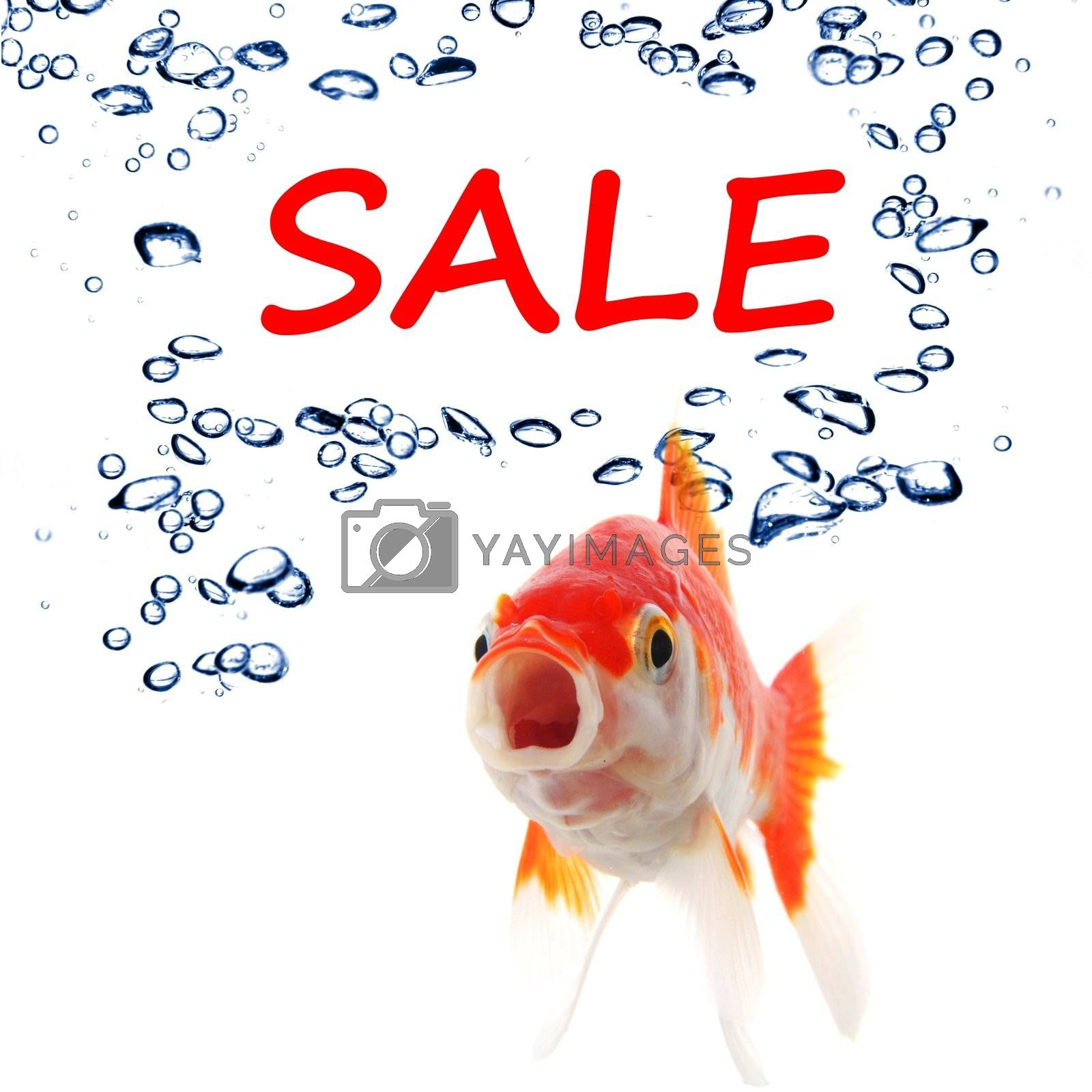 Royalty free image of sale by gunnar3000