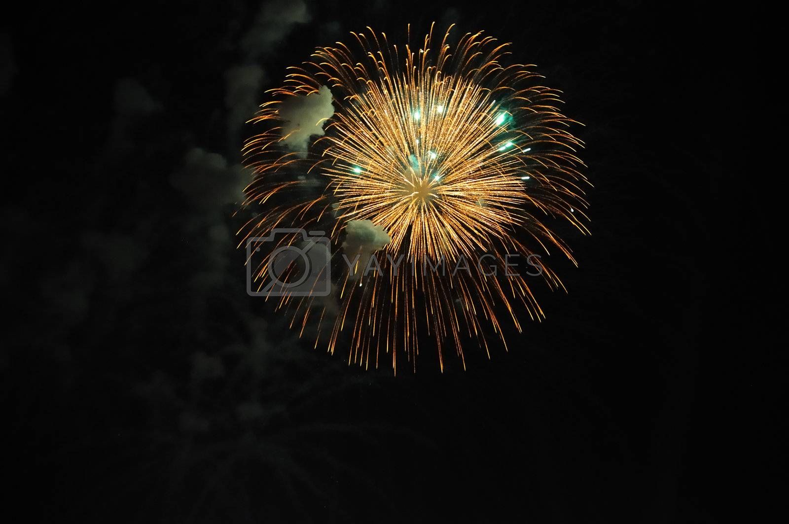 Celebration with fire works on the night sky