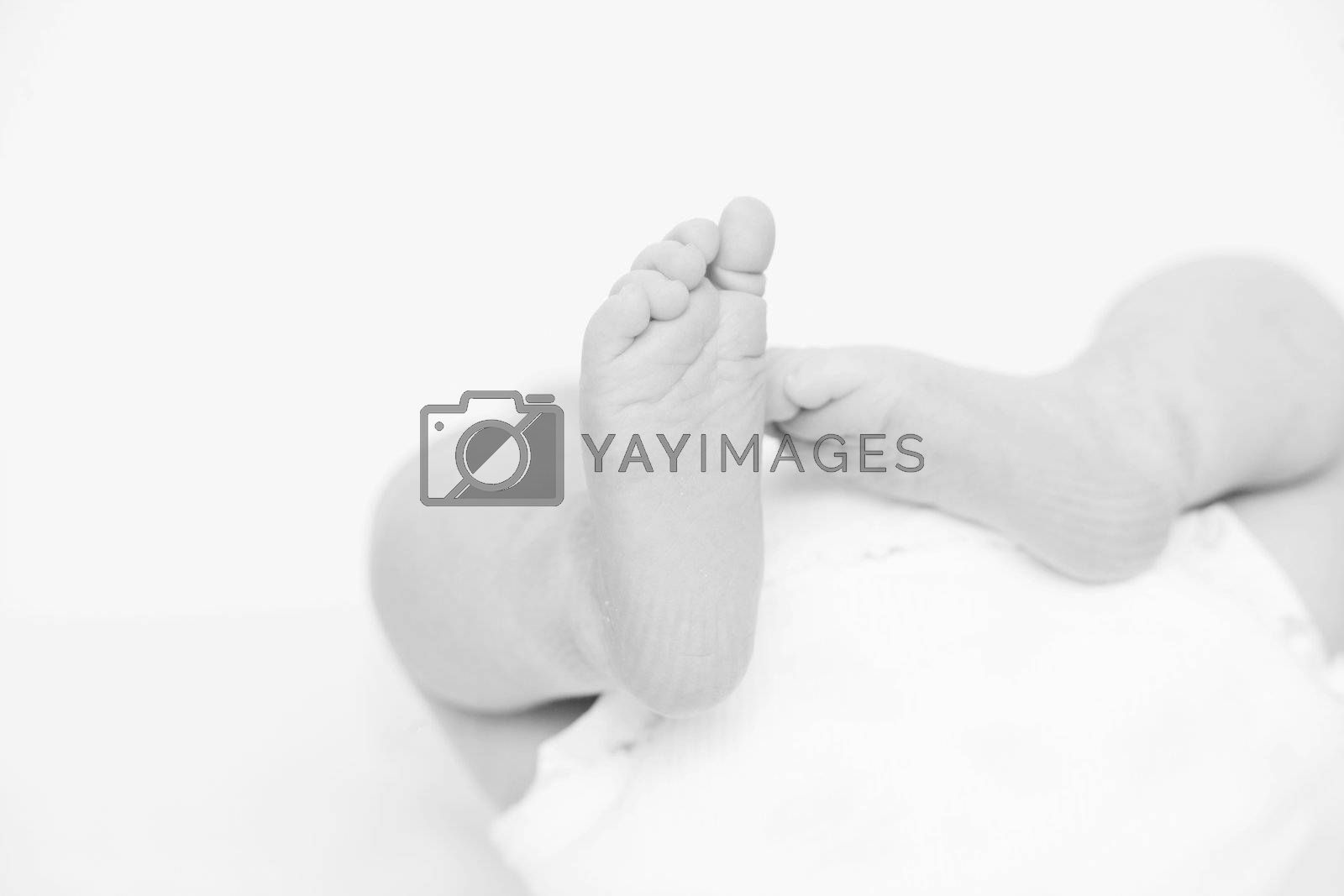 foot of newborn baby as close up