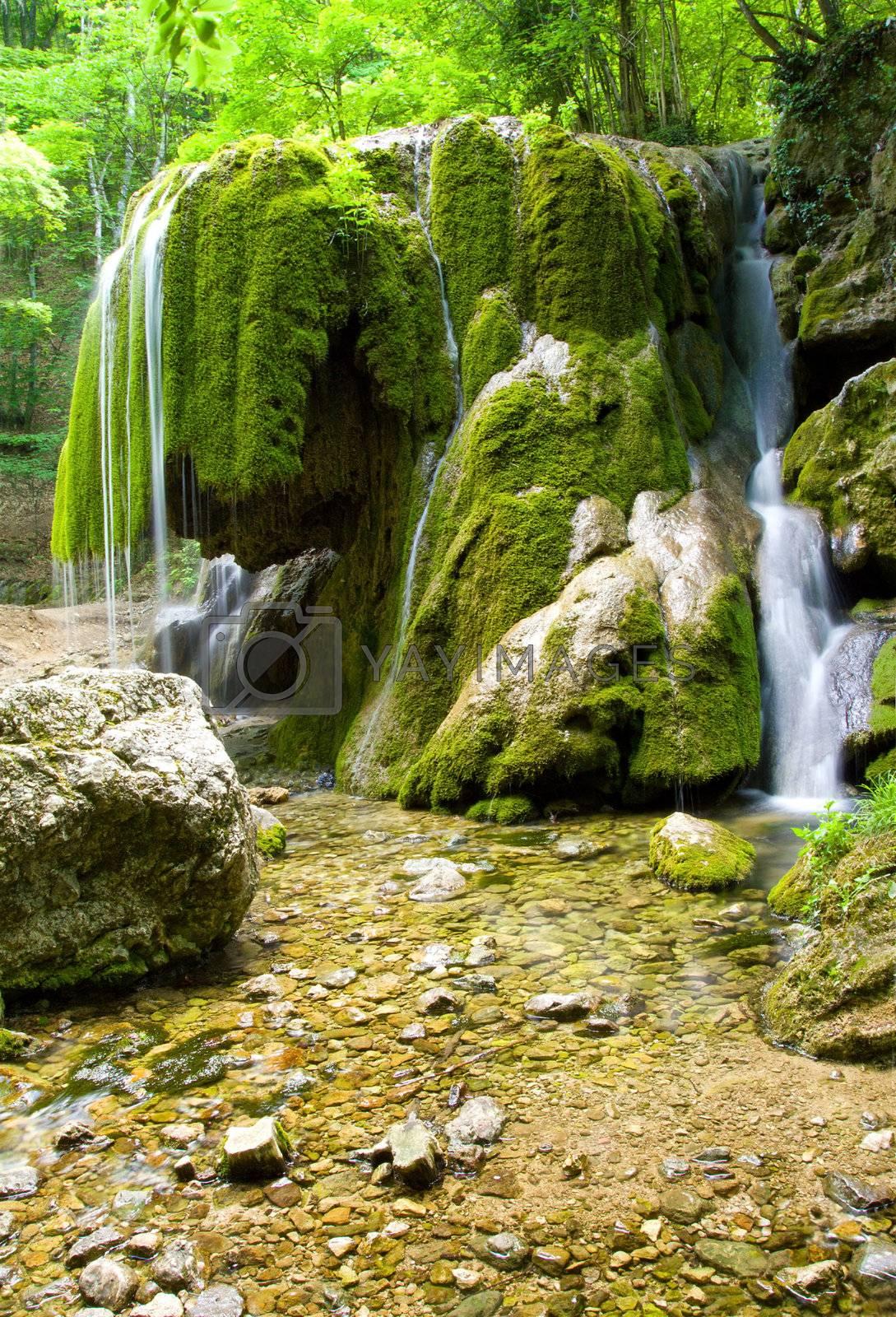 beautiful waterfall in forest by Alekcey