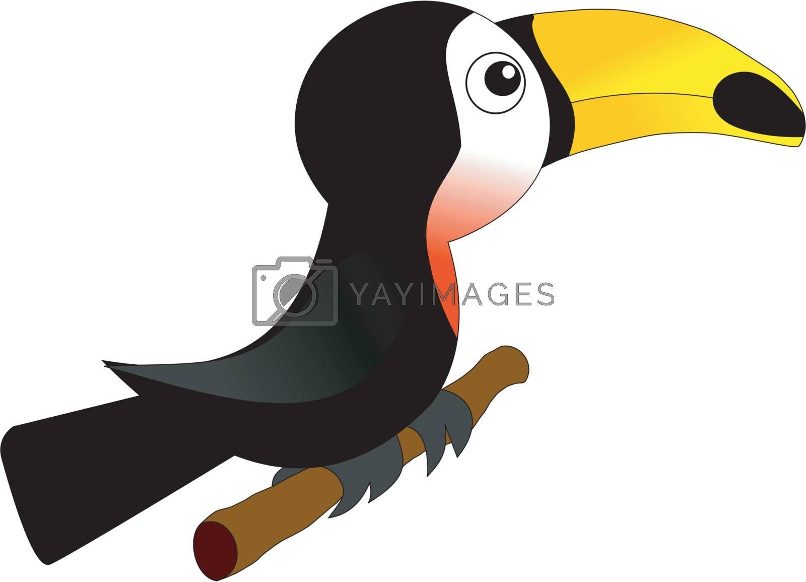Funny character little toucan in cartoon style