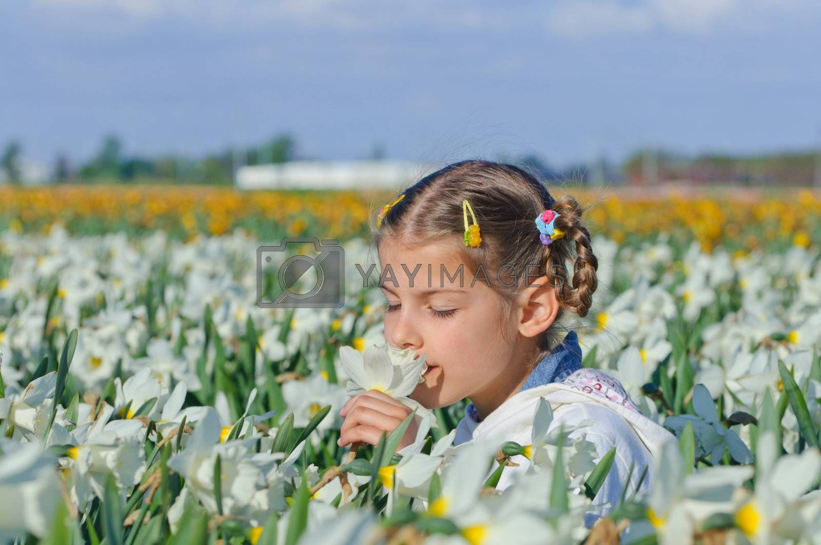 little girl sitting on the meadow with daffodils