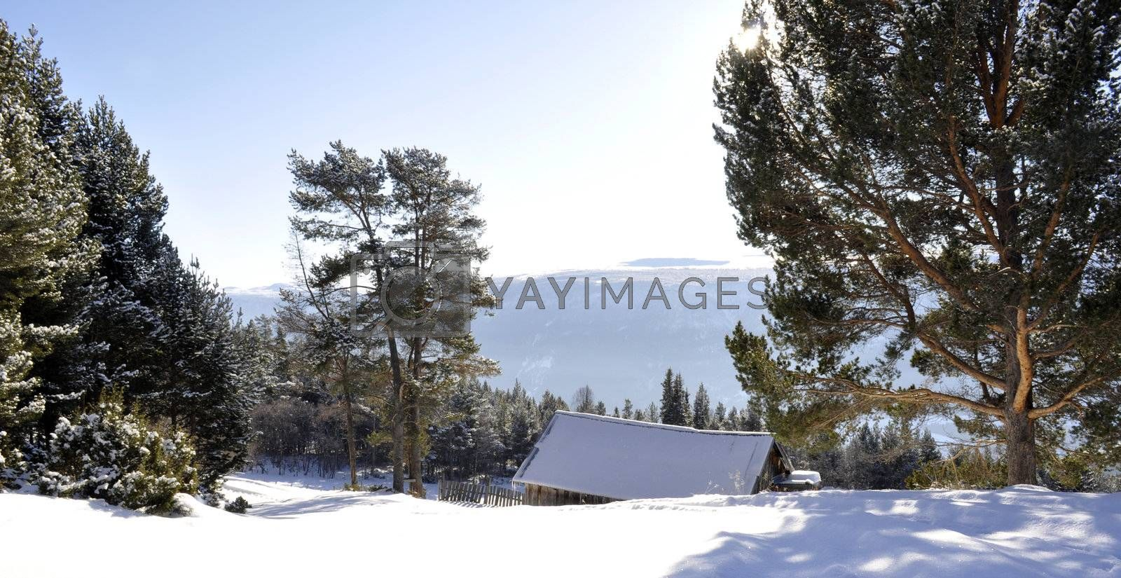 a mountain landscape in the winter