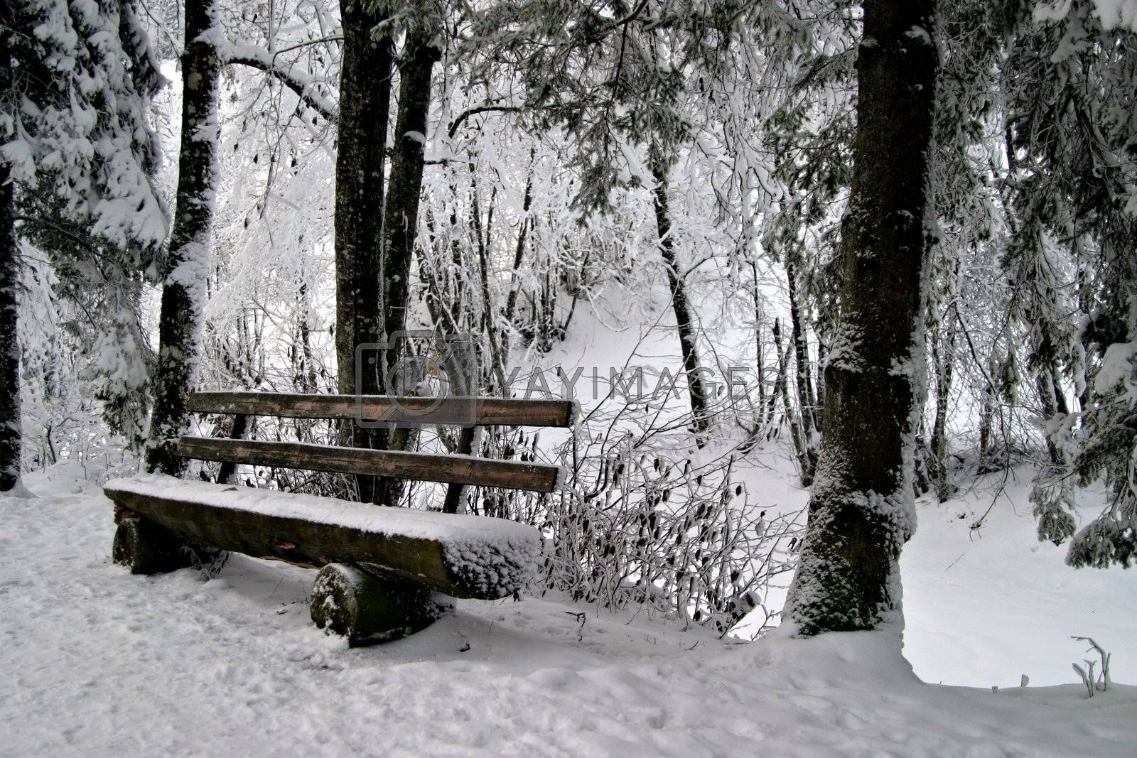 Woonden bench in snow