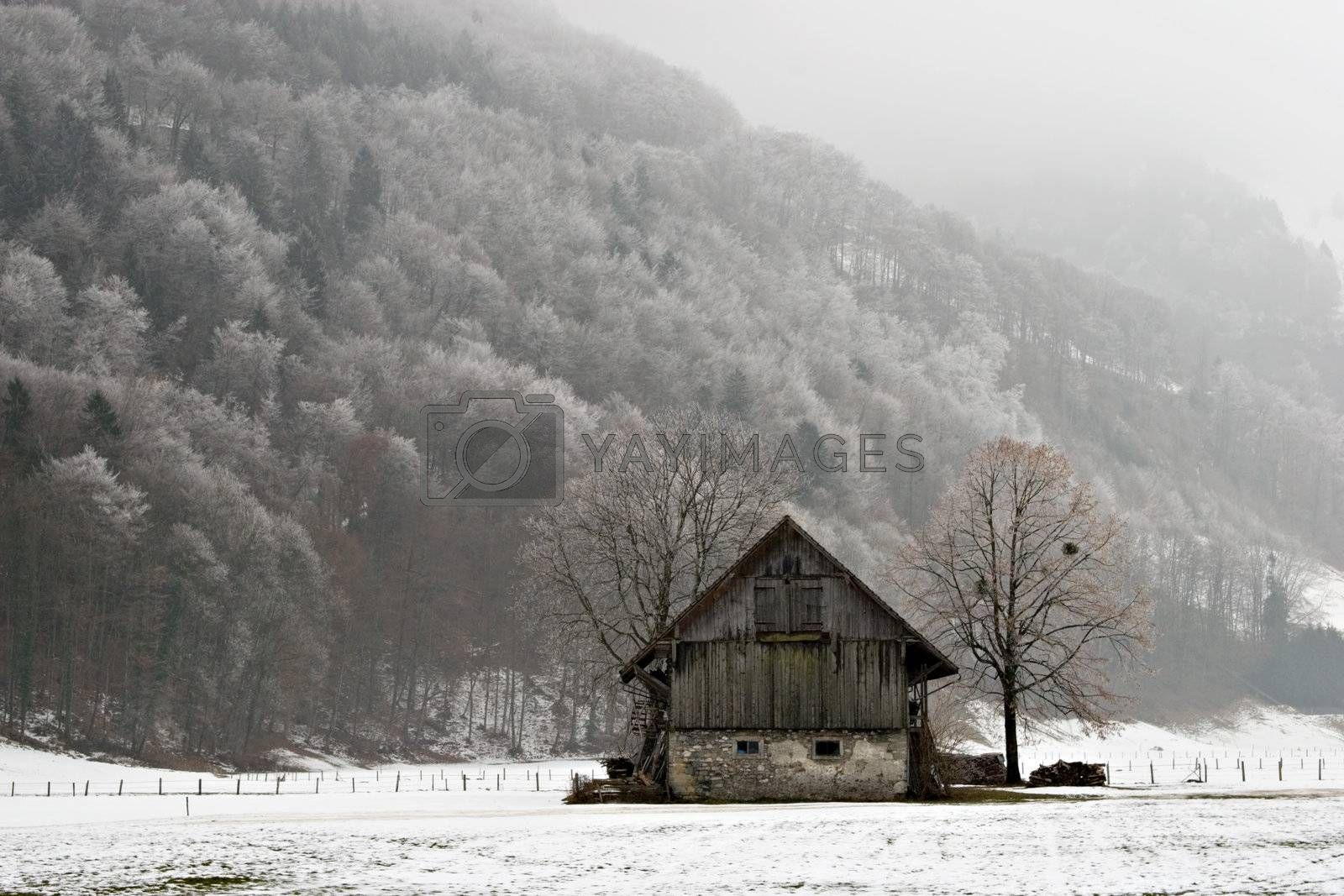 Old barn in snowy field.