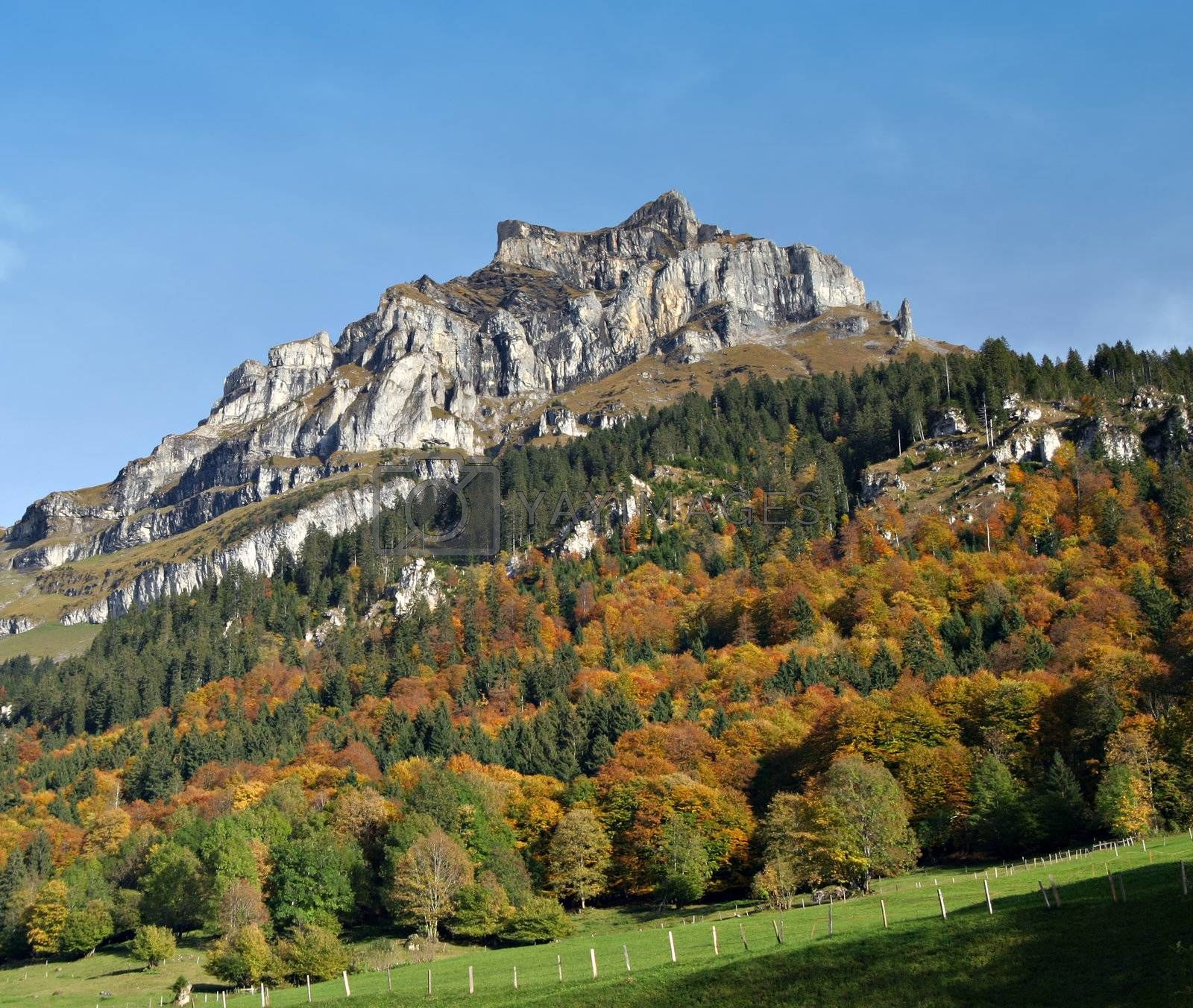 Landscape: Colored trees and mountain in the Swiss Alps.