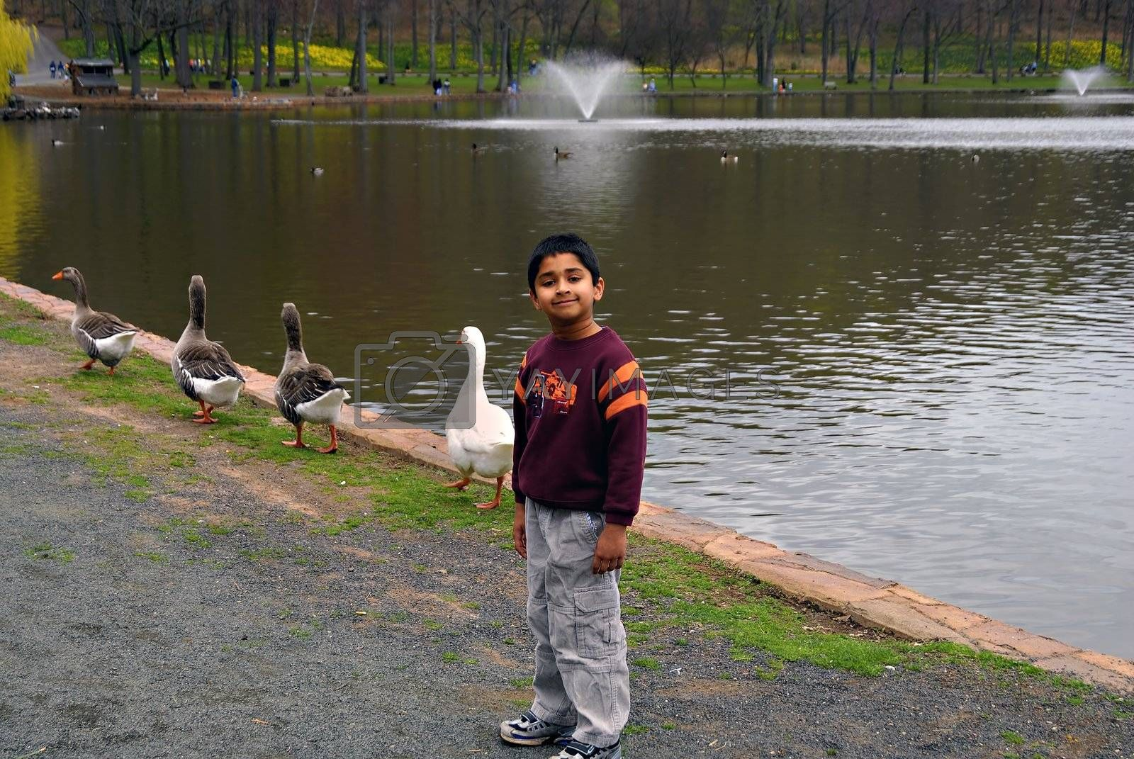 Boy excited to see ducks by pazham