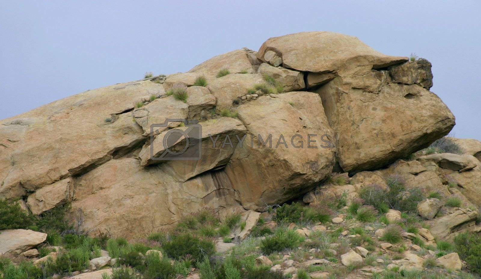 Rock Face (6346) by hlehnerer